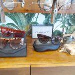Gafas de Sol GANT en Estepona