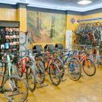 Venta y Reparación de Bicicletas en Estepona