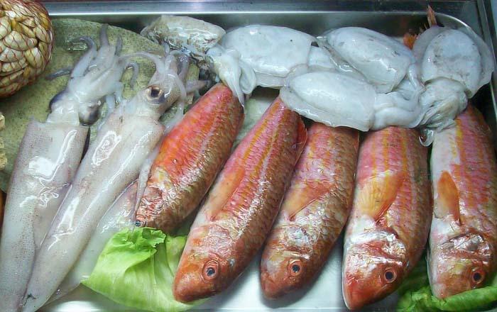 Calamares, Chocos y Pescado fresco