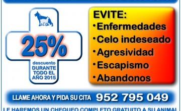 Campaña de esterilización para mascotas