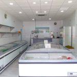 Tienda de Congelados en Estepona Cubitos de Hielo