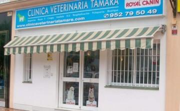 Veterinario Clínica Veterinaria Tamara Estepona